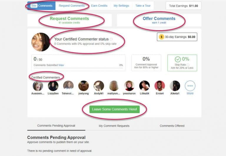 Site Comments At Wealthy Affiliate